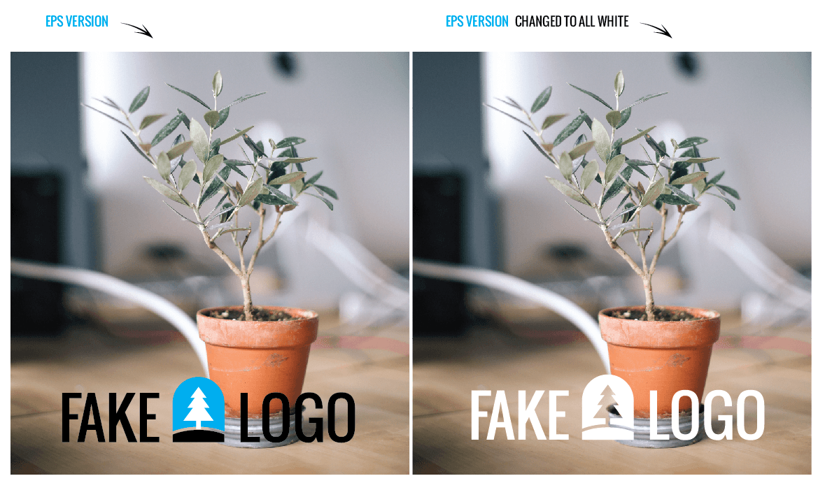 Your Logo & Transparency